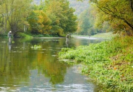 Fly fishing Bosnia Hosted Trip – Paul Procter Report