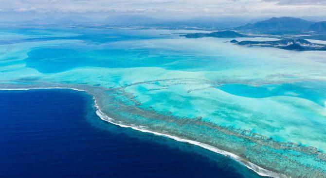 New Caledonia – Poingam