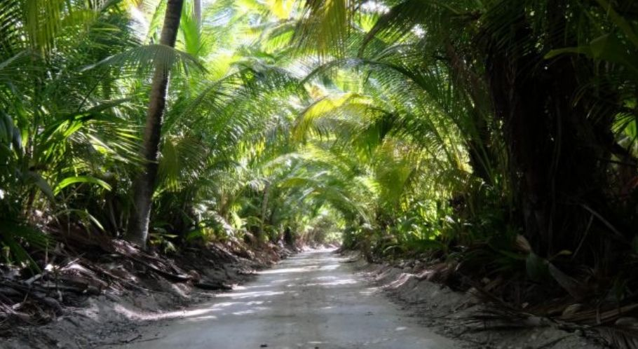 Fly Fishing Cocos Keeling Islands – Client trip report